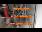 Introduction à l'Aquatronica avec poisson d'or